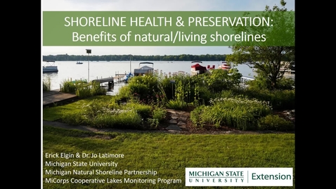 Thumbnail for entry Shoreline Health and Preservation