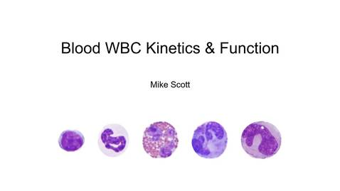 Thumbnail for entry VM 523-WBC Kinetics and Functions
