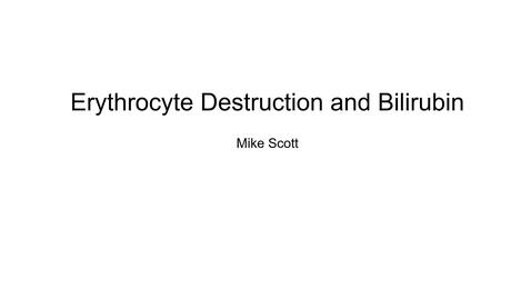 Thumbnail for entry VM 523-RBC Destruction and Bilirubin
