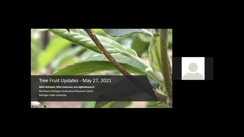 Thumbnail for entry NW MI IPM Update - May 27, 2021