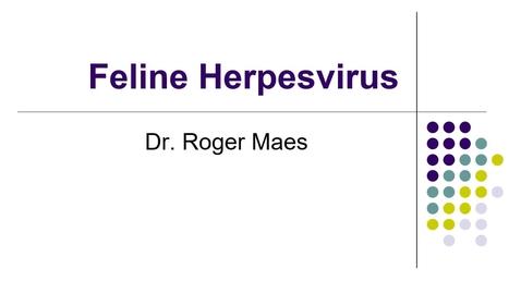 Thumbnail for entry VM 530-Feline herpesvirus (2021)-Maes