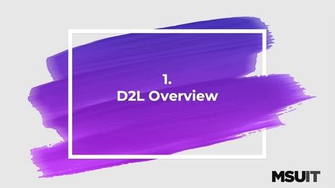 Thumbnail for entry IT Virtual Workshop - D2L Basics