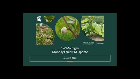 Thumbnail for entry IPM Fruit Meeting June 22 2020
