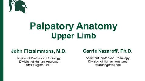 Thumbnail for entry Palpatory anatomy of the Upper Limb