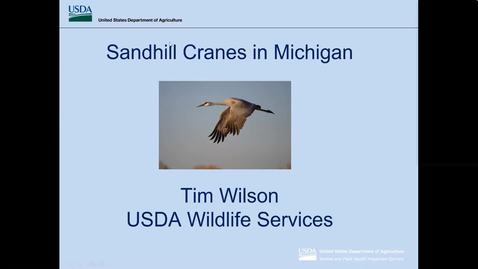 Thumbnail for entry Wildlife Management Webinar - Sandhill Crane