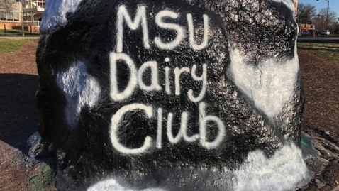 Thumbnail for entry MSU Dairy Club Small Animals Day