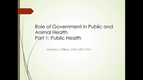 Thumbnail for entry VM 501-Mod 5 Role of Gov PH