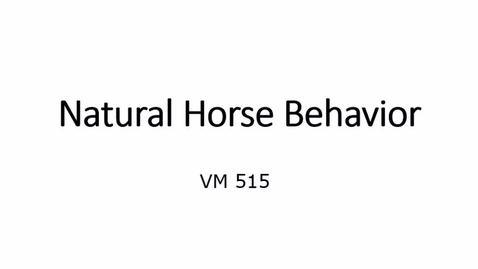 Thumbnail for entry VM 515-Natural Horse Behavior