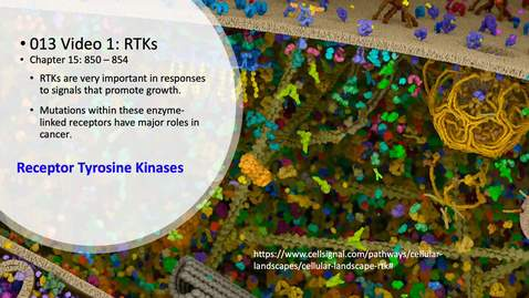 Thumbnail for entry 013 Video 1 Receptor tyrosine kinases