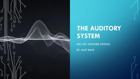 Thumbnail for entry The Auditory System - Matt Bays