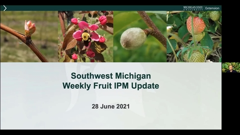 Thumbnail for entry SW Michigan Fruit Update June 28, 2021