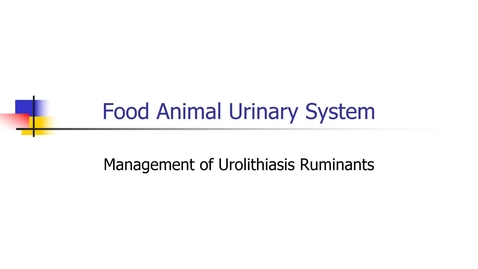 Thumbnail for entry Food_Animal_Urinary_Tract_Urolithiasis