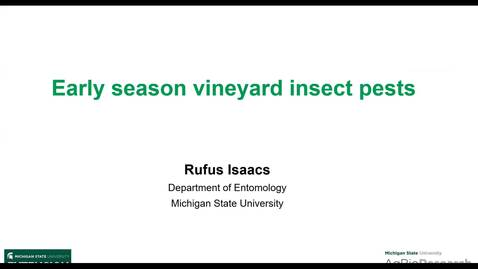 Thumbnail for entry Early season vineyard insect pests