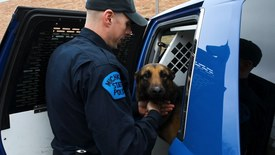 Thumbnail for entry Michigan State University College of Veterinary Medicine Retired Police Dog Fund