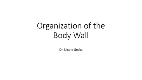 Thumbnail for entry ANTR510 Organization of the Body Wall