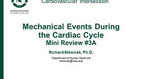 Thumbnail for entry CPR Intersession: Mechanical Events During the Cardiac Cycle