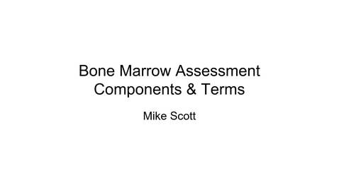 Thumbnail for entry VM 523-Bone Marrow Assessment - Components and Terms