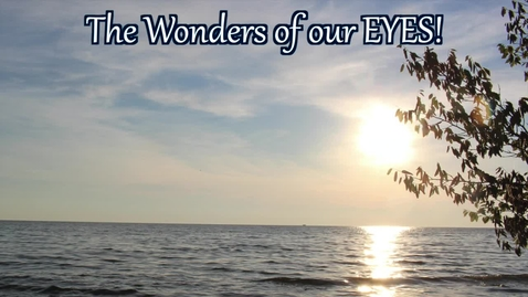 Thumbnail for entry The Wonders of our EYES!