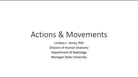 Thumbnail for entry Joint Actions & Movements Fall 2020