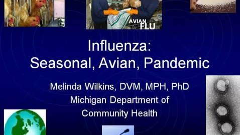 Thumbnail for entry VM_544-10112010-Influenza-Wilkins