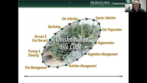 Thumbnail for entry Growing and marketing Christmas trees