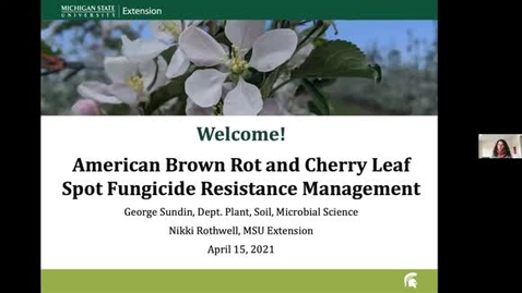Thumbnail for entry American Brown Rot and Cherry Leaf Spot Fungicide Resistance Management