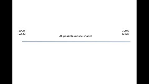 Thumbnail for entry MolecularEvolution