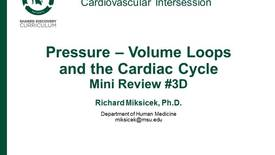 Thumbnail for entry CPR Intersession: Pressure-Volume Loops and the Cardiac Cycle