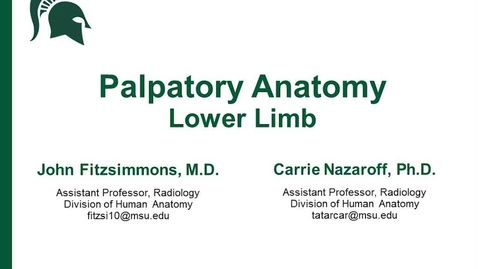 Thumbnail for entry Palpatory anatomy of the Lower Limb