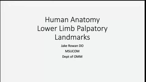 Thumbnail for entry ANTR510 - Human Anatomy Lower Limb Palpatory Landmarks
