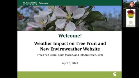 Thumbnail for entry Weather Impact on Tree Fruit and New Enviroweather Website