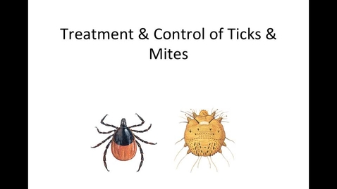 Thumbnail for entry Control-of-ticks-mites-HM-887-week-14