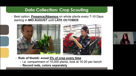 Thumbnail for entry Bug Bites! Session 1: Poinsettia IPM - 06 Oct 2020