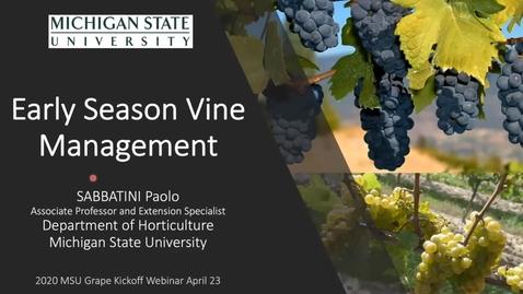 Thumbnail for entry Grape Kickoff 2020 - Early season vine management