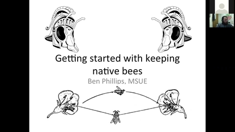 Thumbnail for entry Native bees for pollination