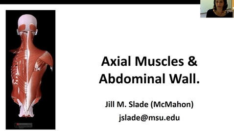 Thumbnail for entry Axial muscles Abd Wall