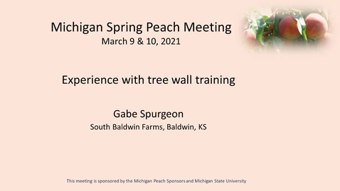 Thumbnail for entry Experience with peach tree wall training