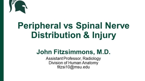 Thumbnail for entry ANTR510 (023) Peripheral nerve vs Spinal Nerve Injuries