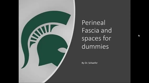 Thumbnail for entry Perineal Fascia and Spaces