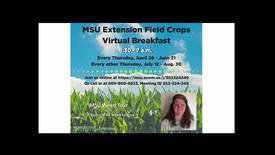 Thumbnail for entry Virtual Breakfast 6/21/18: Erin Burns, MSU Weed Tour