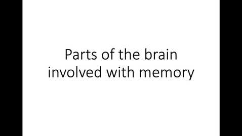 Thumbnail for entry Parts of the Brain Involved with Memory
