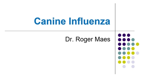 Thumbnail for entry VM 530-Canine influenza (2021)-Maes