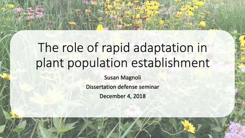 Thumbnail for entry The role of rapid adaptation in plant population establishment