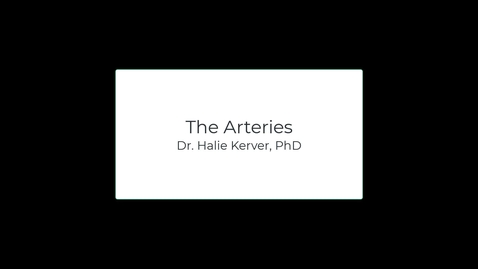 Thumbnail for entry OST571 (Lab 1.2) The Arteries