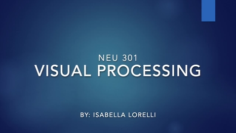 Thumbnail for entry Visual Processing