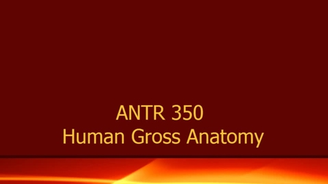 Thumbnail for entry AT&T 2013 ANTR 350 FINAL