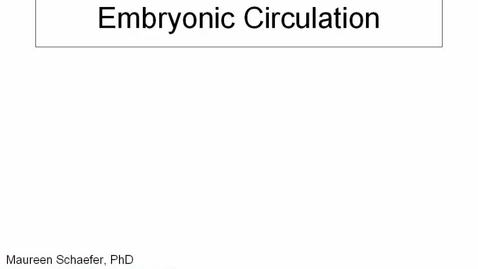 Thumbnail for entry Early Embryology: Embryonic circulation