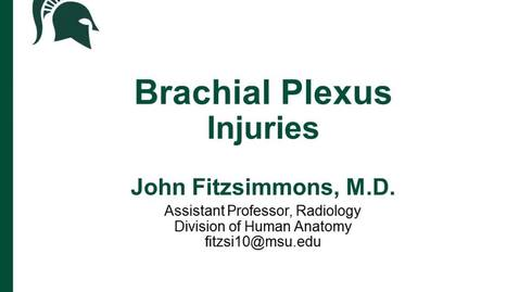 Thumbnail for entry ANTR510 (022) Brachial Plexus Injuries