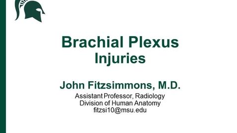 Thumbnail for entry ANTR510 (022) Brachial Plexus Injuries