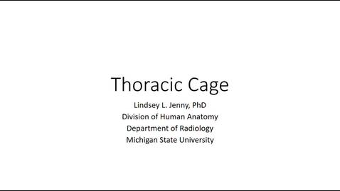 Thumbnail for entry Thoracic Cage Fall 2020